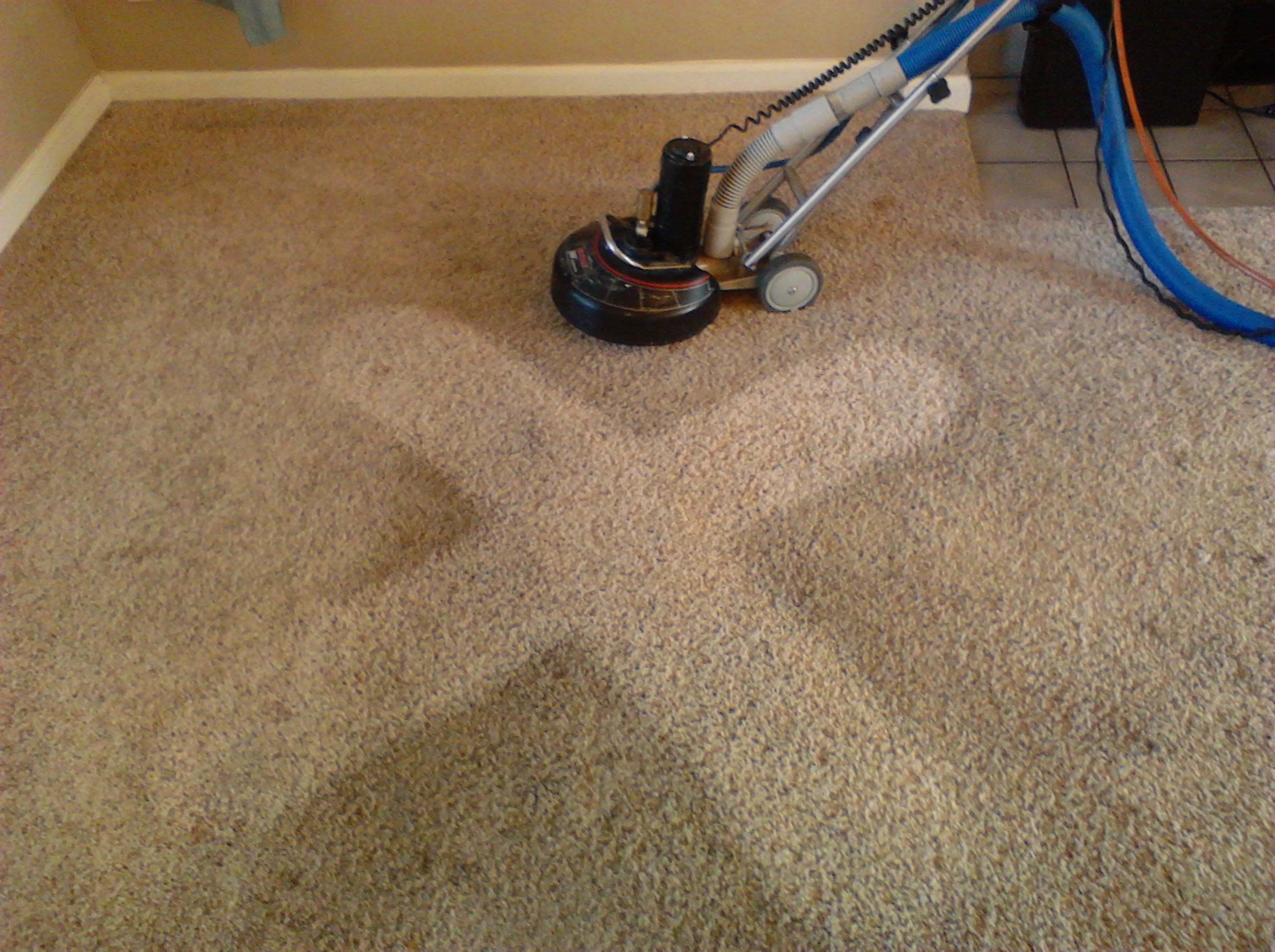 Carpet Steam Residential Cleaning Service